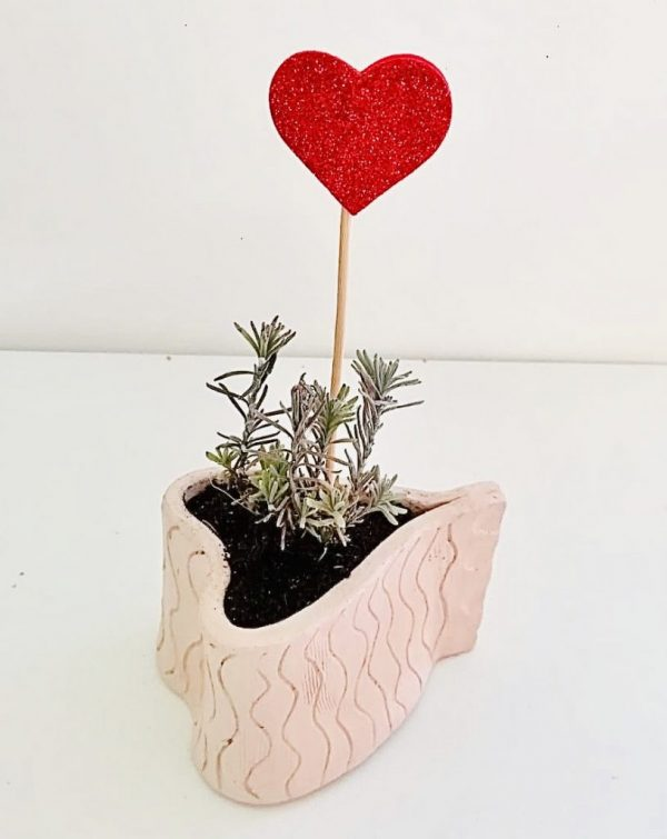 Vaso cuore mini con piantin
